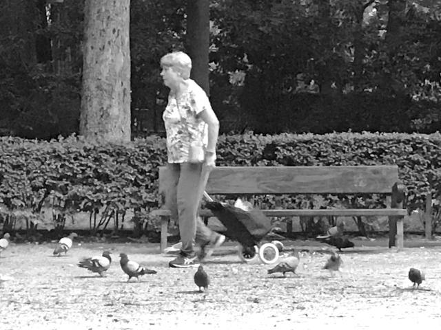 señora con palomas, parque del retiro